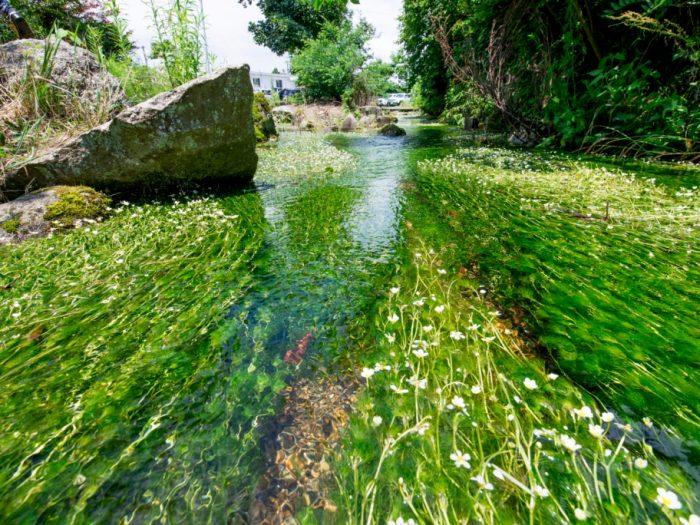 水が育んだ産業のまち 味真野(あじまの)を歩く